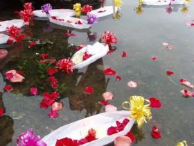 4月6日,厦门将举行集体海葬活动