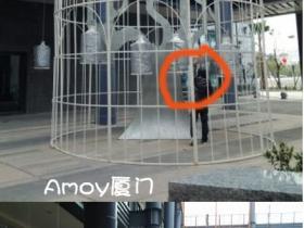 海沧阿罗海城市广场的大鸟笼