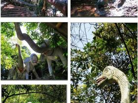厦门同安野山谷恐龙世界