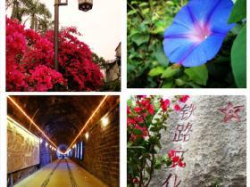 厦门铁路公园·谱写你我的故事