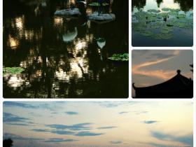 在植物园体验闲云野鹤般的生活