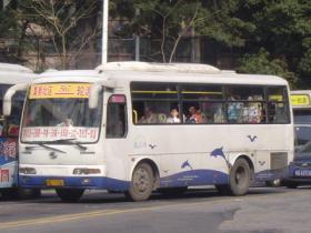 回忆:神一样的厦门507路公交车
