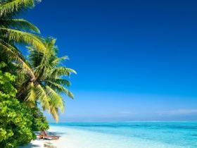 会展中心沙滩下月完工 将种植海葡萄等