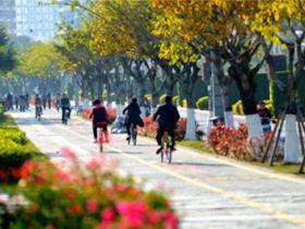 海沧绿色骑行道,太美了