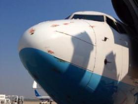 天呐!网曝厦航一飞机撞鸟,机身血迹斑斑