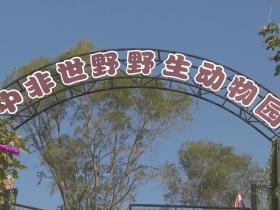 厦门新野生动物园来了:翔安中非世野野生动物园正式开园