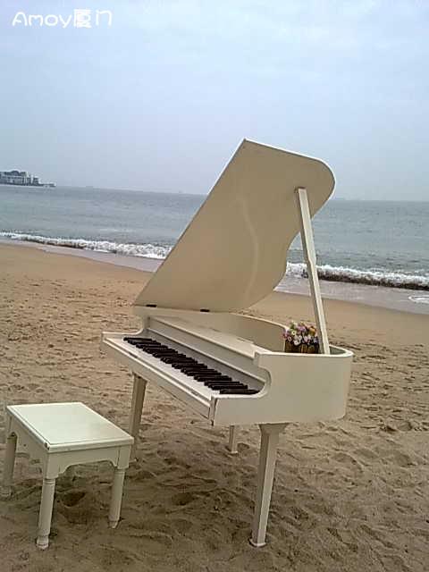 报名:与五缘湾鼓浪屿钢琴艺术馆亲密接触