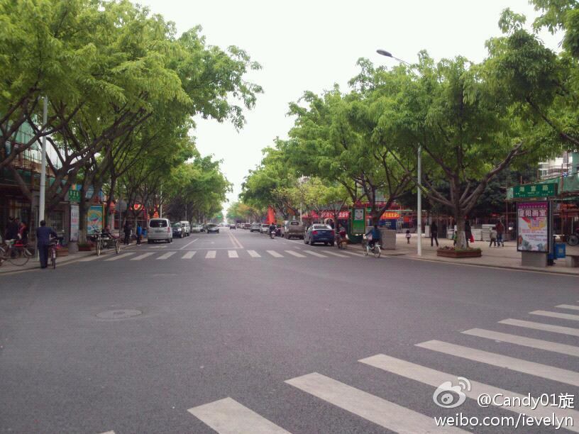 海沧海富路拟将改为步行街