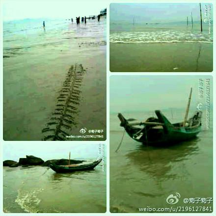 大退潮的环岛路沙滩,很沉静,很致远。