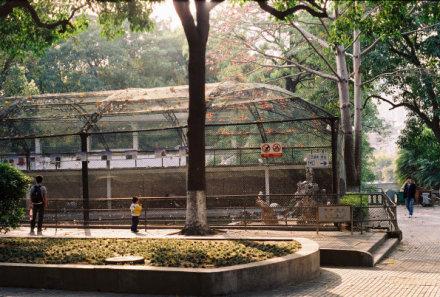儿时的回忆:厦门中山公园