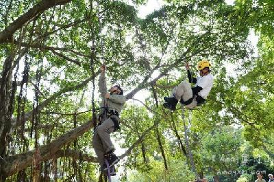 厦大爬树课开课 能爬10米高大树才及格