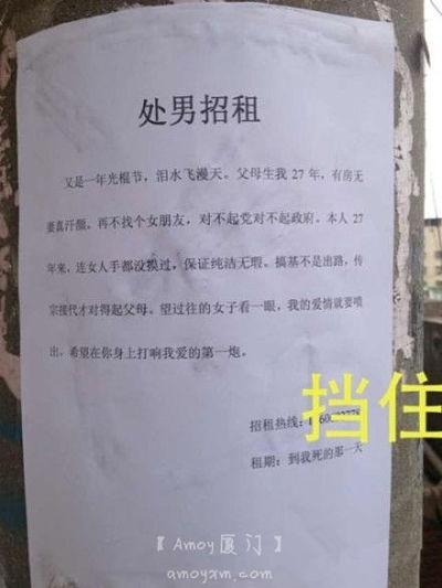 """大逆天啊:厦大附近电线杆出现超碉""""处男招租"""""""