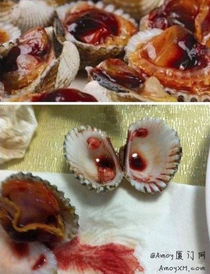 厦门最重口的美食:血蚶