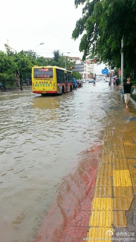 海上城市厦门:你家有船没?准备出海了