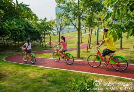 厦门海沧公共自行车系统 自行车道 照片