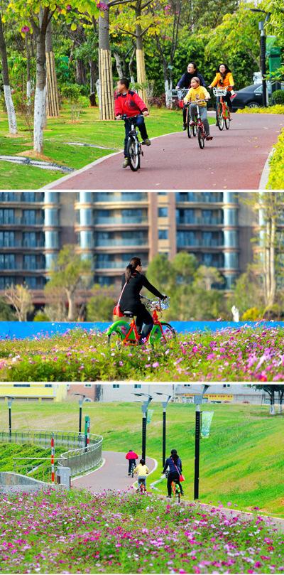 海沧绿色骑行道,海沧公共自行车,海沧自行车道