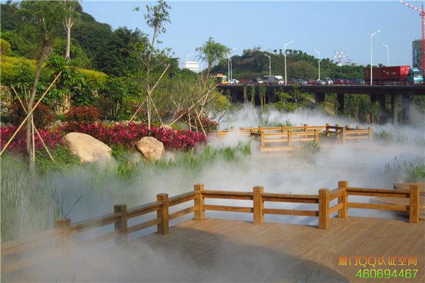 来厦门最美仙境:一起迷失海沧大屏山公园雾森