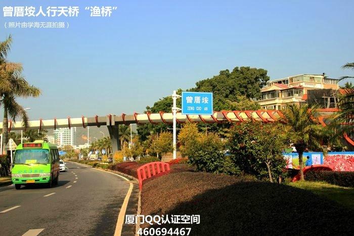 """创意:曾厝垵鱼骨天桥""""渔桥""""月底投用"""