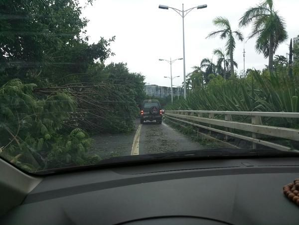 末日来临:当台风莫甘蒂登陆厦门(随笔)