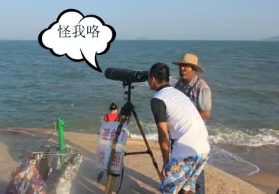 厦门海的对面是台湾吗?是的,有台湾,也有漳州! 厦门 台湾 Amoy厦门 4